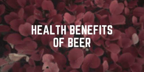Health Benefits of Beer: 15 Interesting Facts About Beer